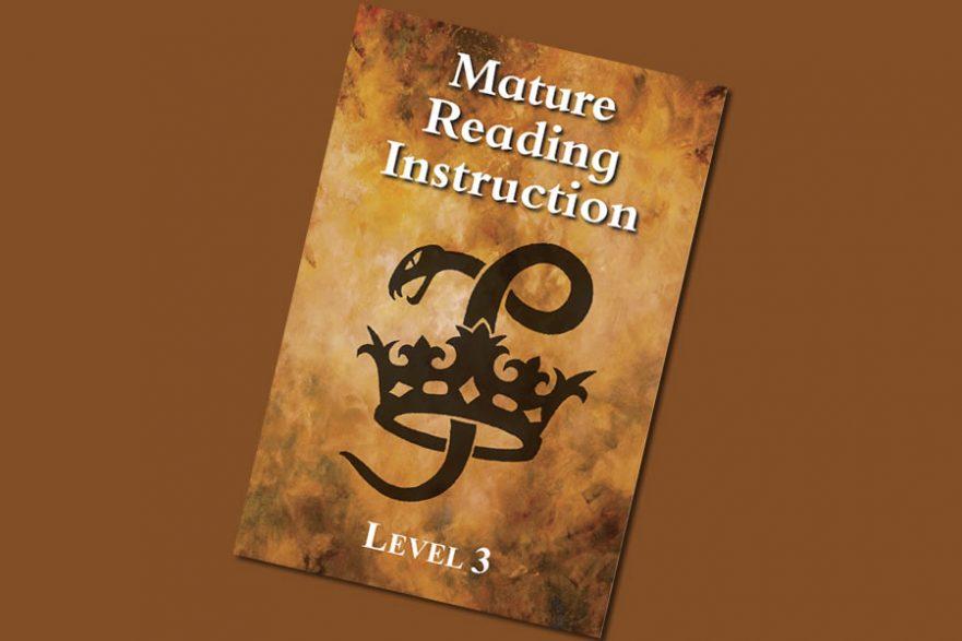 MRI reading instruction level 3